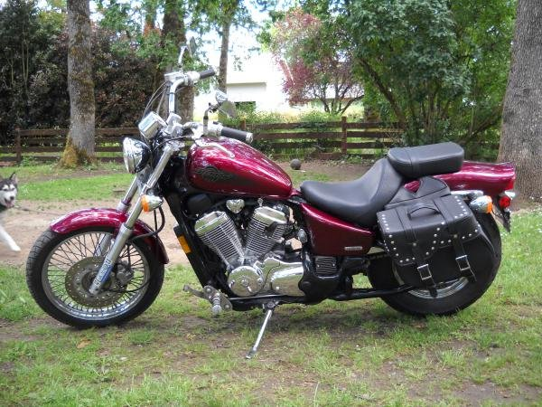 Showcase cover image for Jesse Shanklin's 2004 Honda Shadow VLX 600