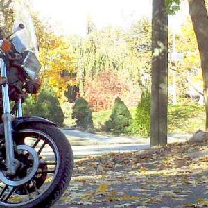 Autumn CB650SC.jpg